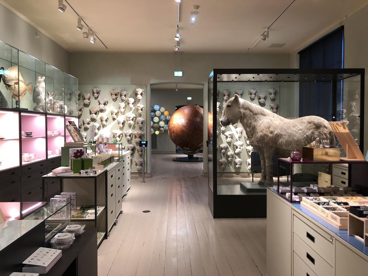 Museumsbutikk