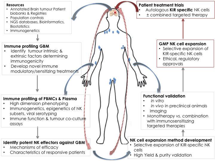 immunotheraphy