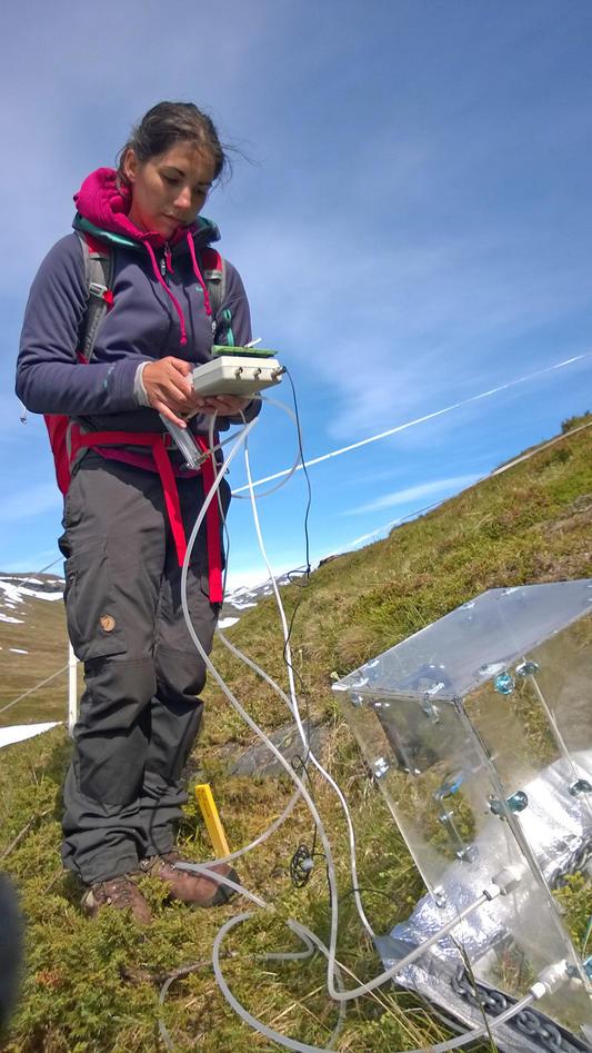 PhD student Inge Althuzien measuring plant carbon flux in a grassland plot