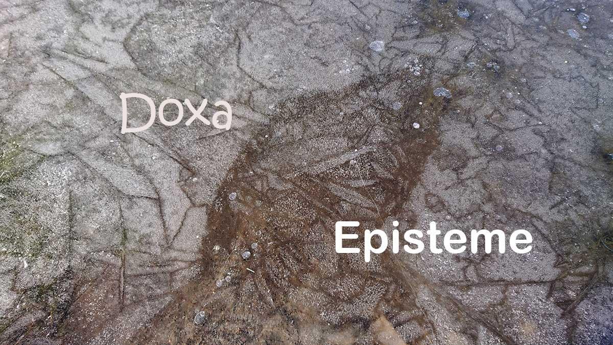 Krakkelert is som kan se ut som om det avbilder et hundehode med teksten Doxa og Episteme over