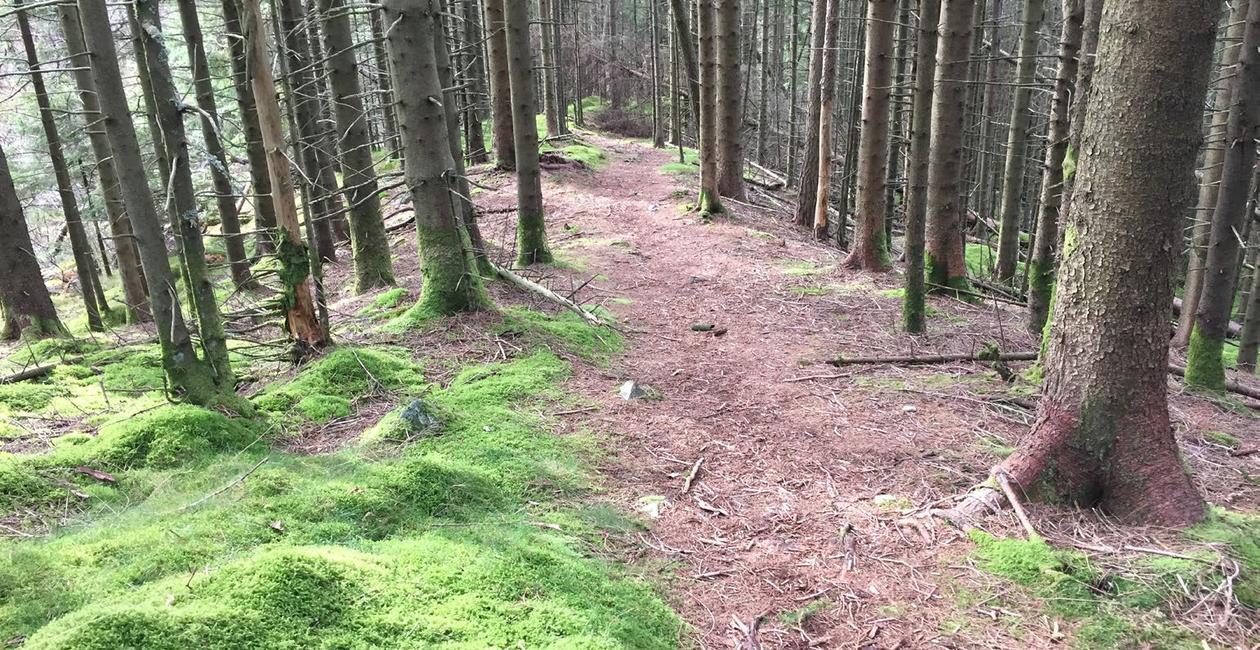 Geologi i Fana: Morenerygg på Fanafjellet