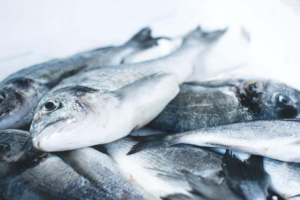 FIsk på et fiskemarked