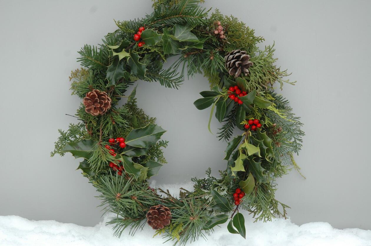 Flott julekrans lage av vintergrønt fra skogen i Arboretet.