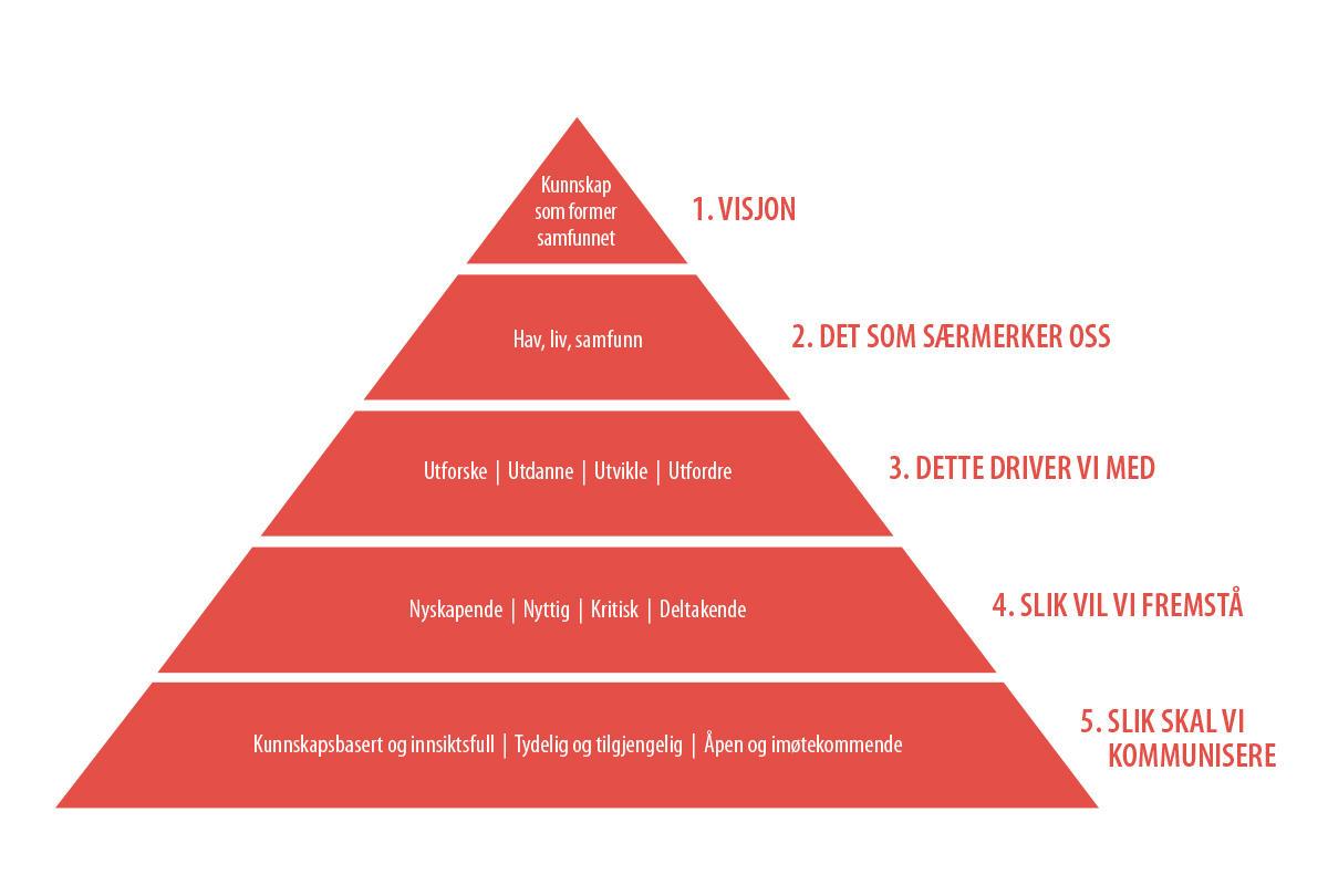 Verdipyramide, kommunikasjonsplattform