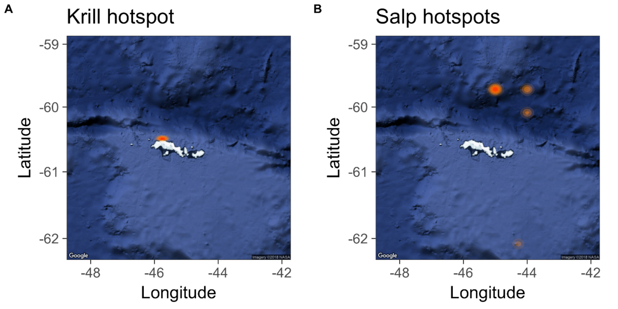Map showing krill and salp hotspots in the South Orkney Islands, Antarctica