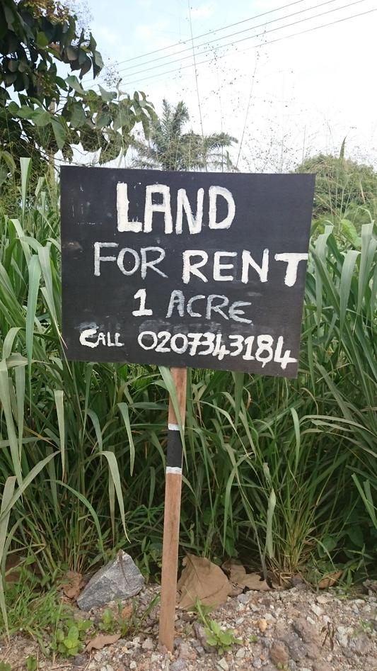 Land for rent sign.