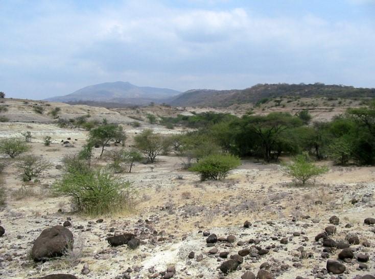 Landskap_Kenya