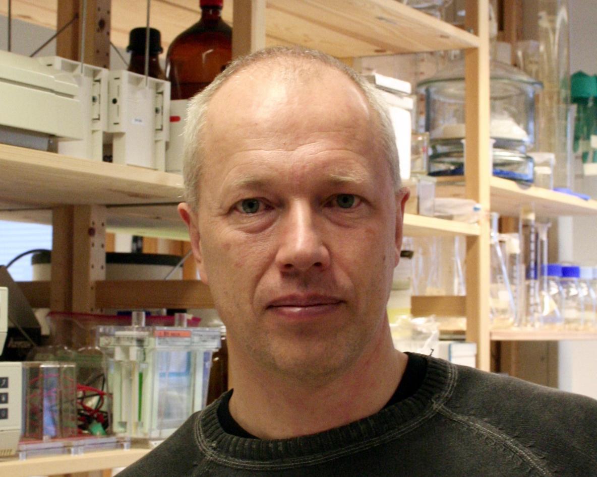 Sigurd Stefansson, professor ved Institutt for biologi. Portrett.