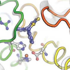 Inhibitor design