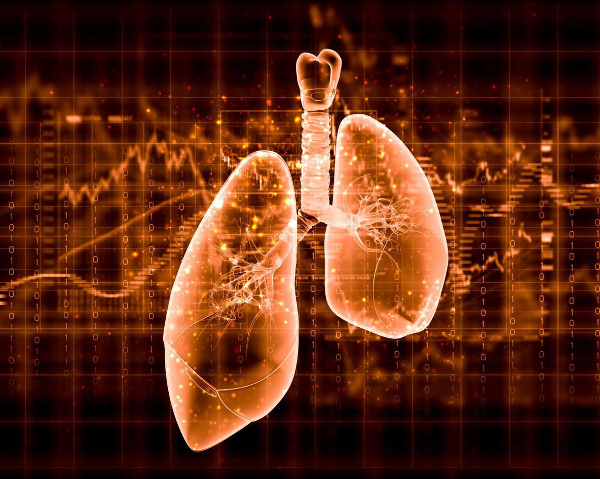 Lung Function Decline In Menopausal Women News University Of Bergen