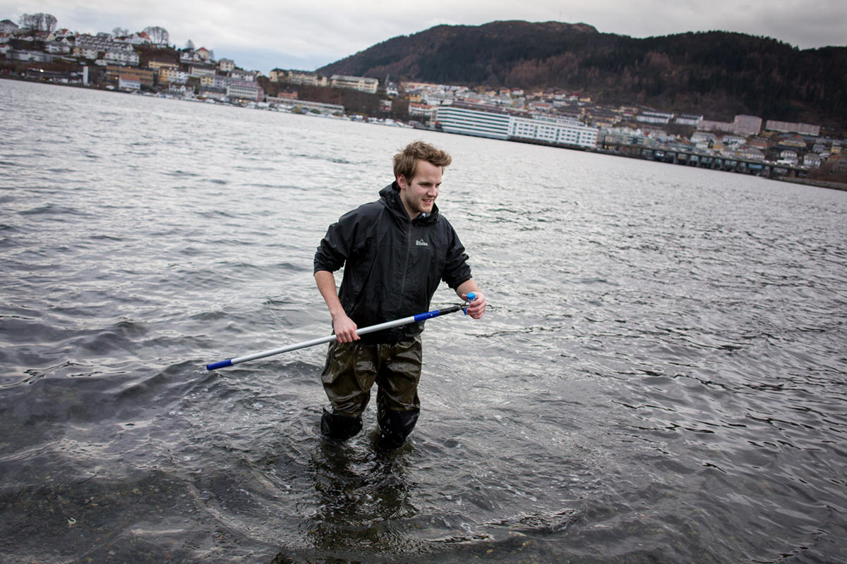 Student doing research in the ocean