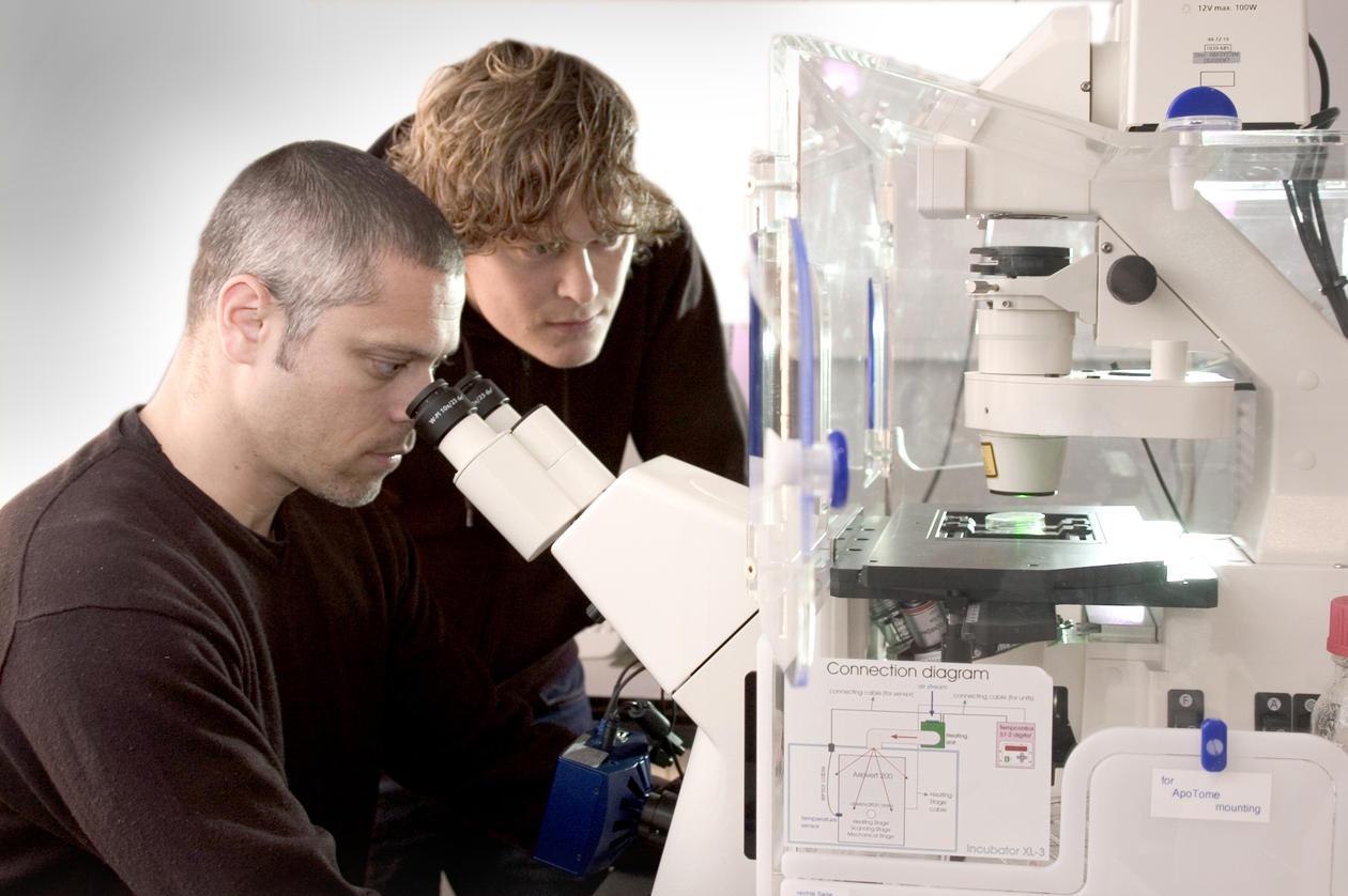 Masterprogram i biomedisin vann internasjonaliseringsprisen