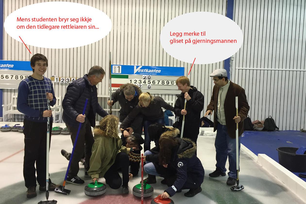 Miljøtoksgruppa på curling november 2014