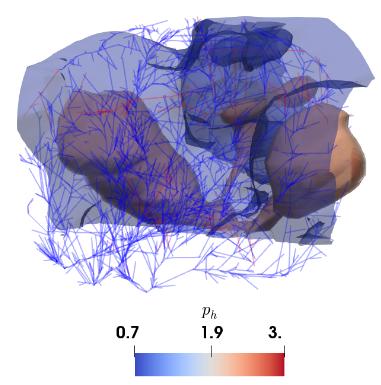 flux in brain