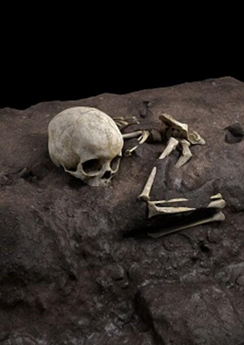 Virtual ideal reconstruction of Mtoto's position in the burial pit in Afrca dated 78000 year