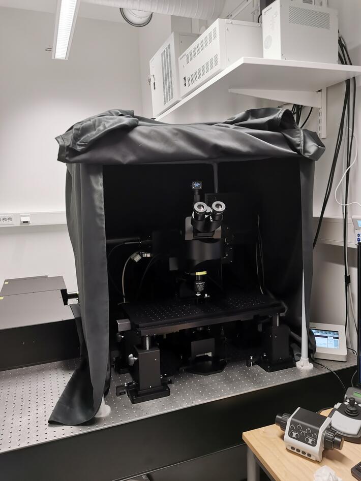 Multphoton microscope