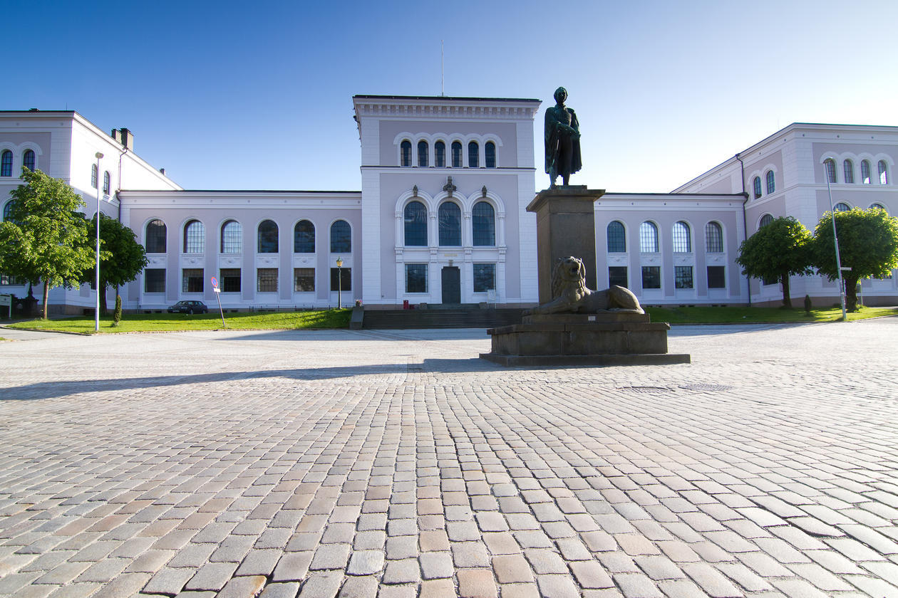 Museplass i retning naturhistorisk museum