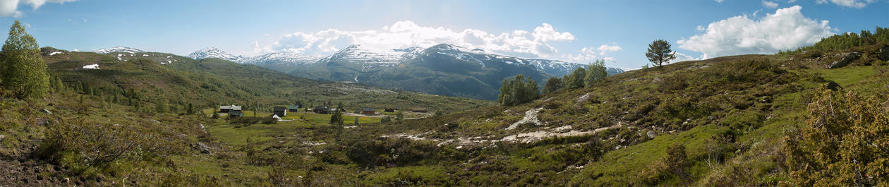 A panoramic photo of western Norway landscape with wooded slopes, grazing pasture and distant snow-capped mountains
