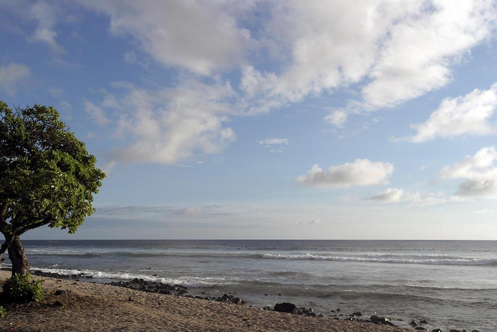 Utsikt Hawaii
