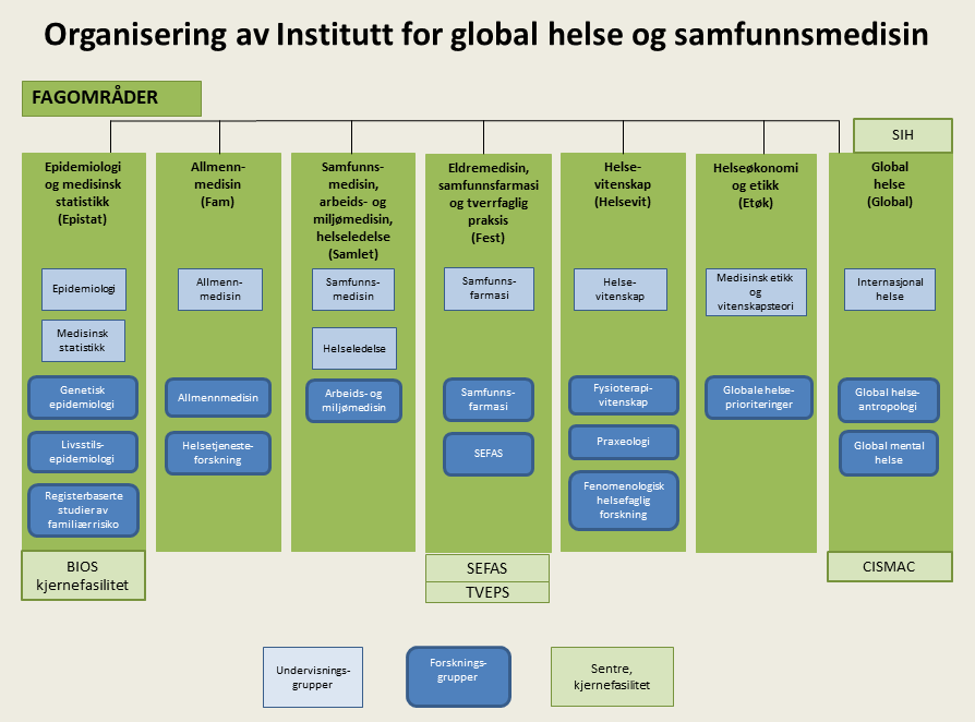 Organisering av Institutt for global helse og samfunnsmedisin