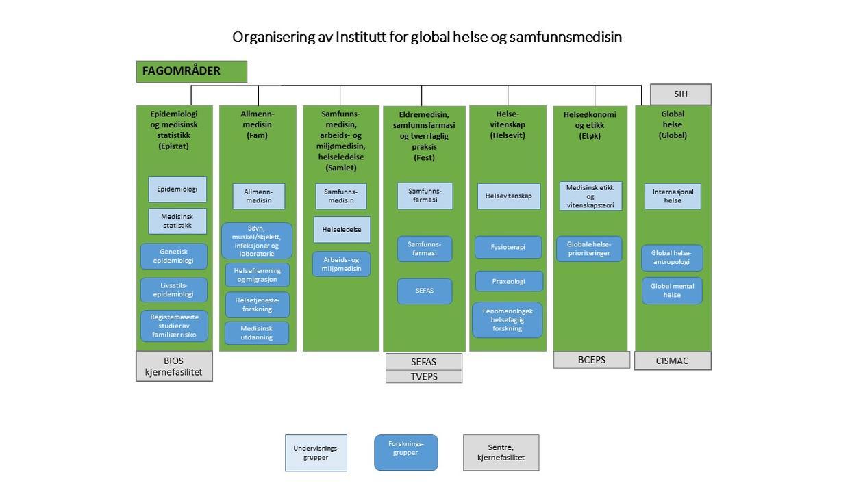 Organisasjonskart fagområder ved IGS