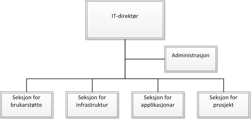 IT-direktør er leiar for IT-avdelinga med administrasjon og fire seksjonar: brukarstøtte, infrastruktur, applikasjonar og prosjekt