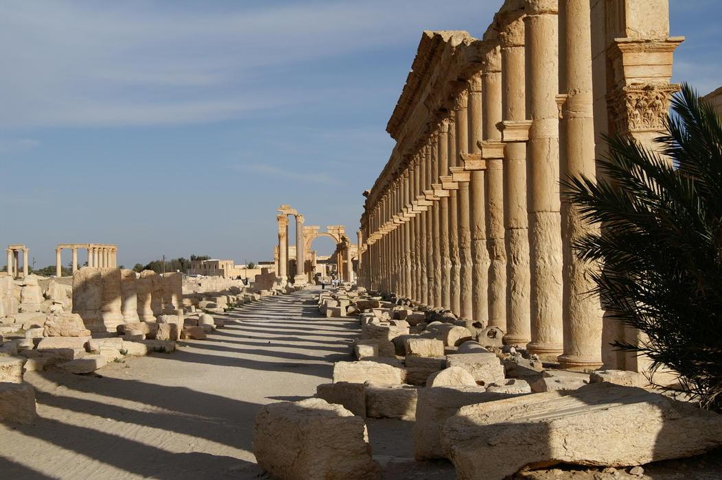 Bilde av Palmyra