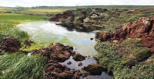 A landscape of melting permafrost