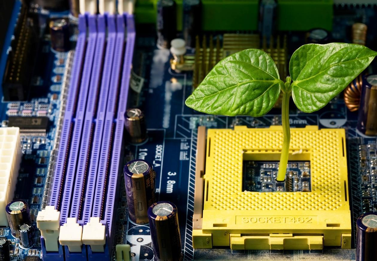 Computer components in purple and yellow, a leaf sticking up from the yellow  component