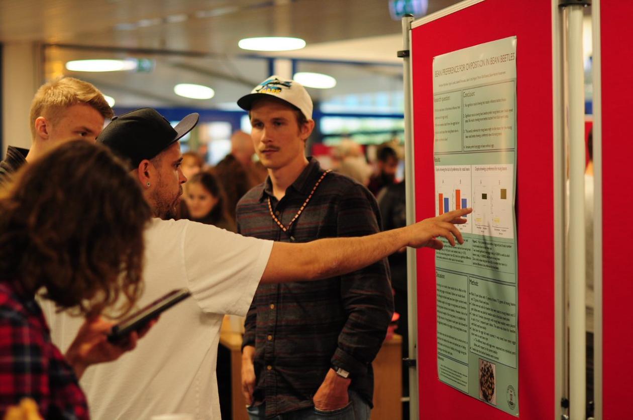 En student forklarer prosjektet sitt for interesserte medstudenter