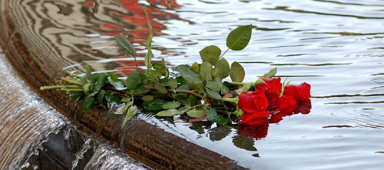 Roser på brønnkant