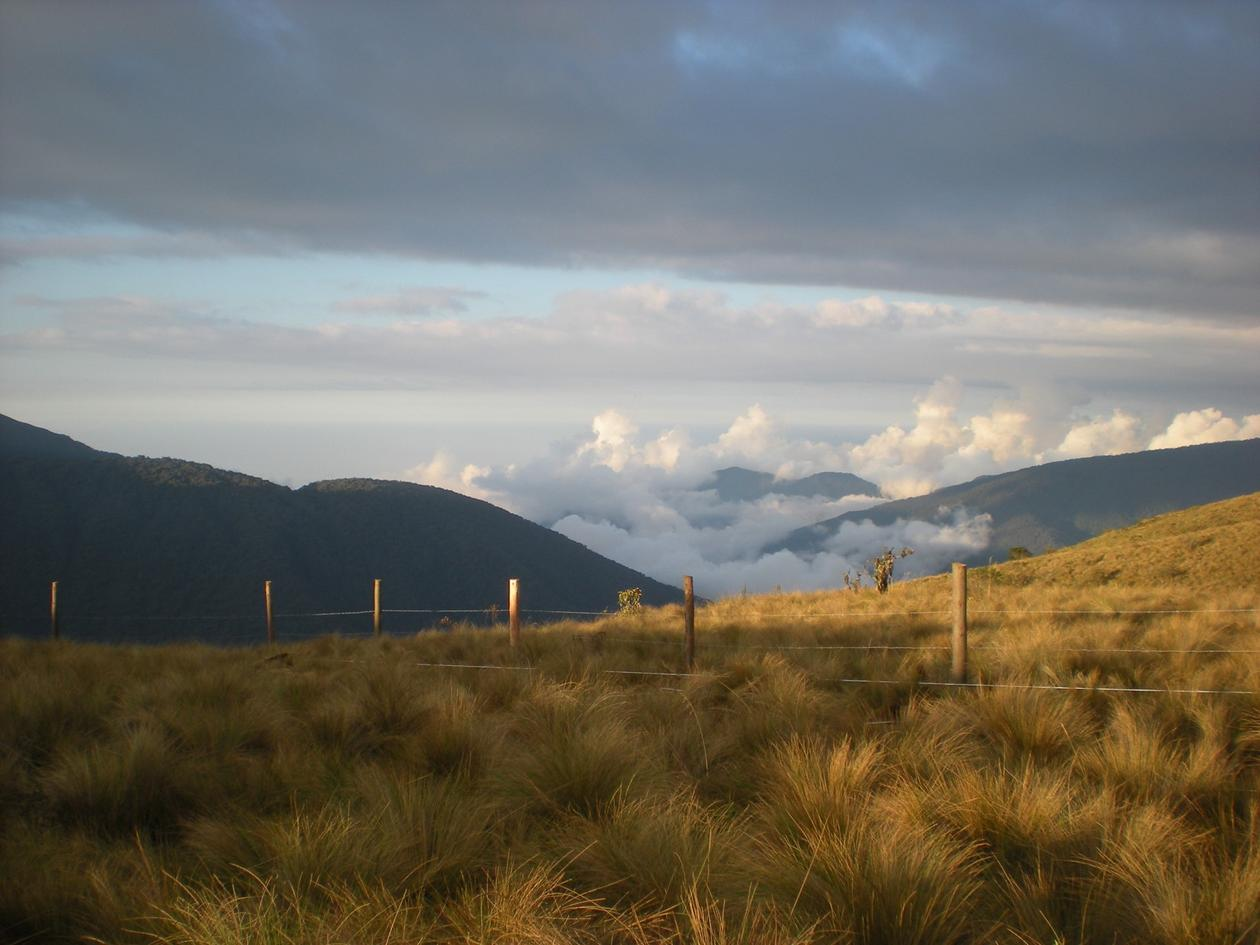 High-elevation grassland with a fence running across it and clouds in the valley
