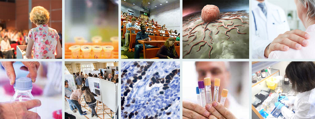 Photocollage of photos from CCBIO Research School situations (teaching, lab, microscope, doctor..)