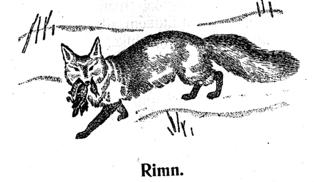 Fra lærebok i kildinsamisk på 1930-tallet