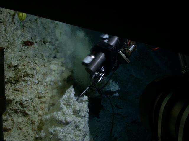 Collecting fluids using a robotic arm
