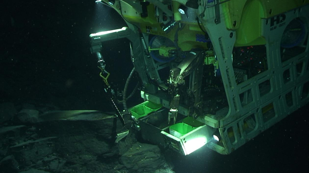 A remotely operated underwater vehicle, commonly referred to as ROV, can  collect biologic and sediment samples from the sea floor.