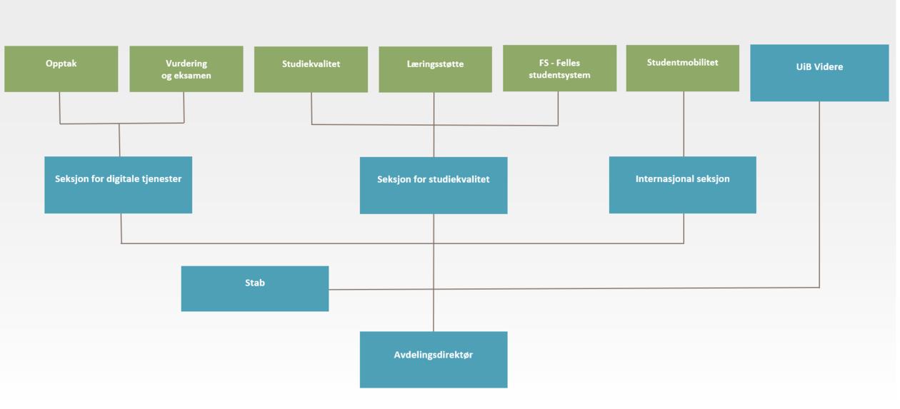 Organisasjonskart over Studieavdelingen