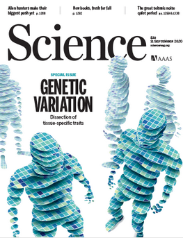 Science Magazine 11 September 2020