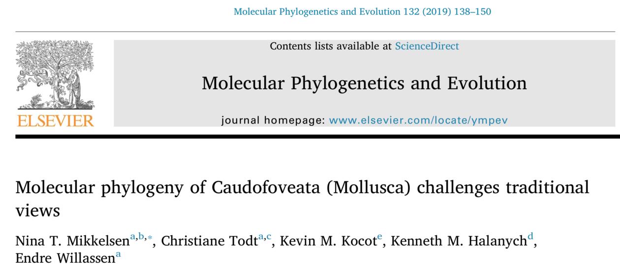 New article on caudofoveata