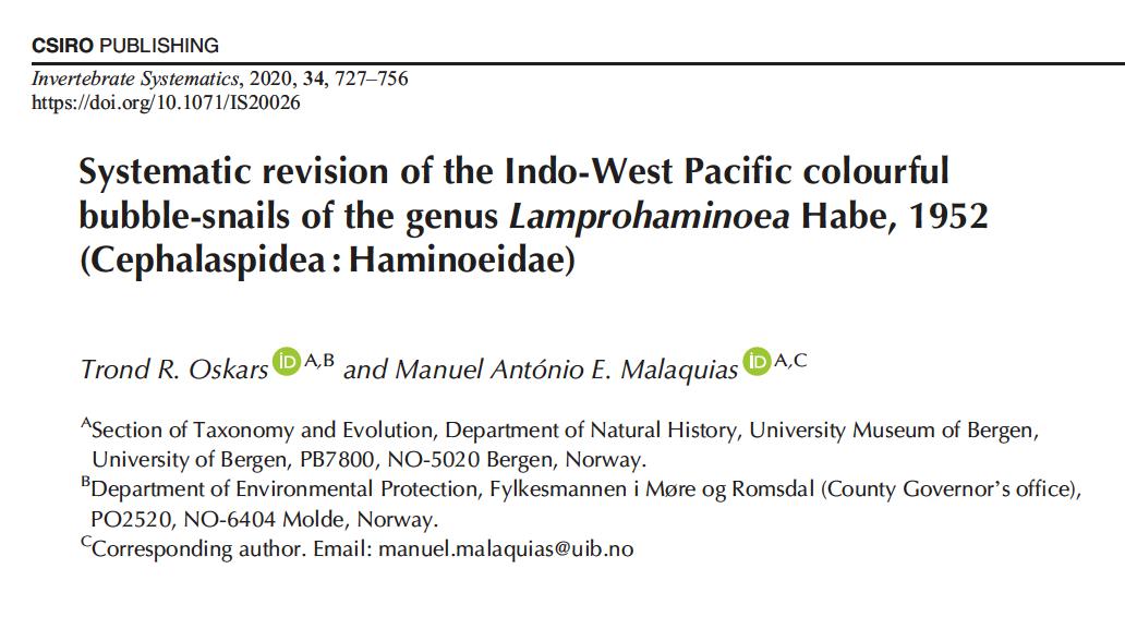 Lamprohaminoea from the IWP