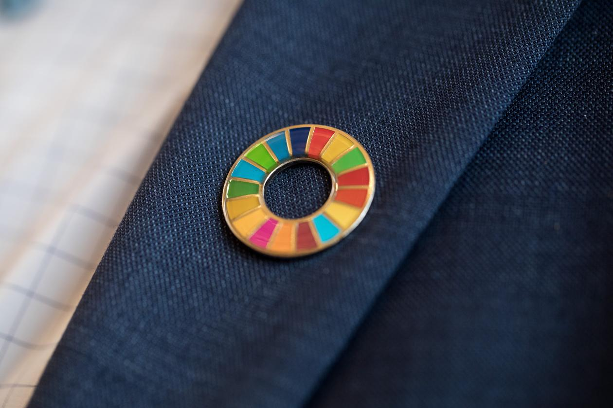 Detail showing dlegate wearing SDG wheel on jacket sleeve at the SDG Conference Bergen in February 2019.