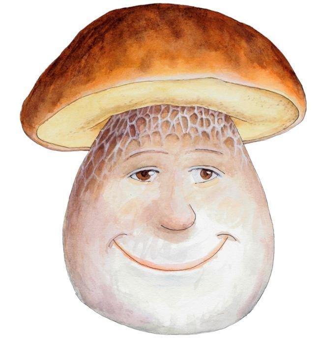 Smilende steinsopp, logo for Soppens dag