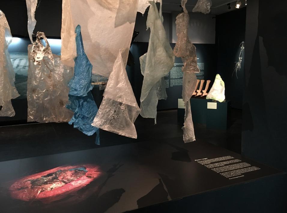 Utstillingen Plasthvalen
