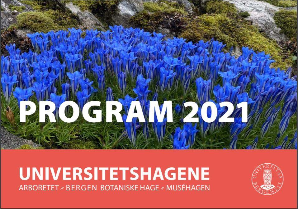 bilde av forsiden på aktivitetskalenderen