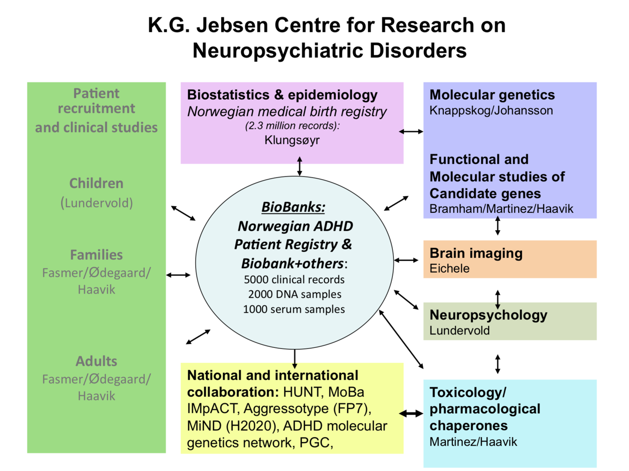 Overview of Research Groups