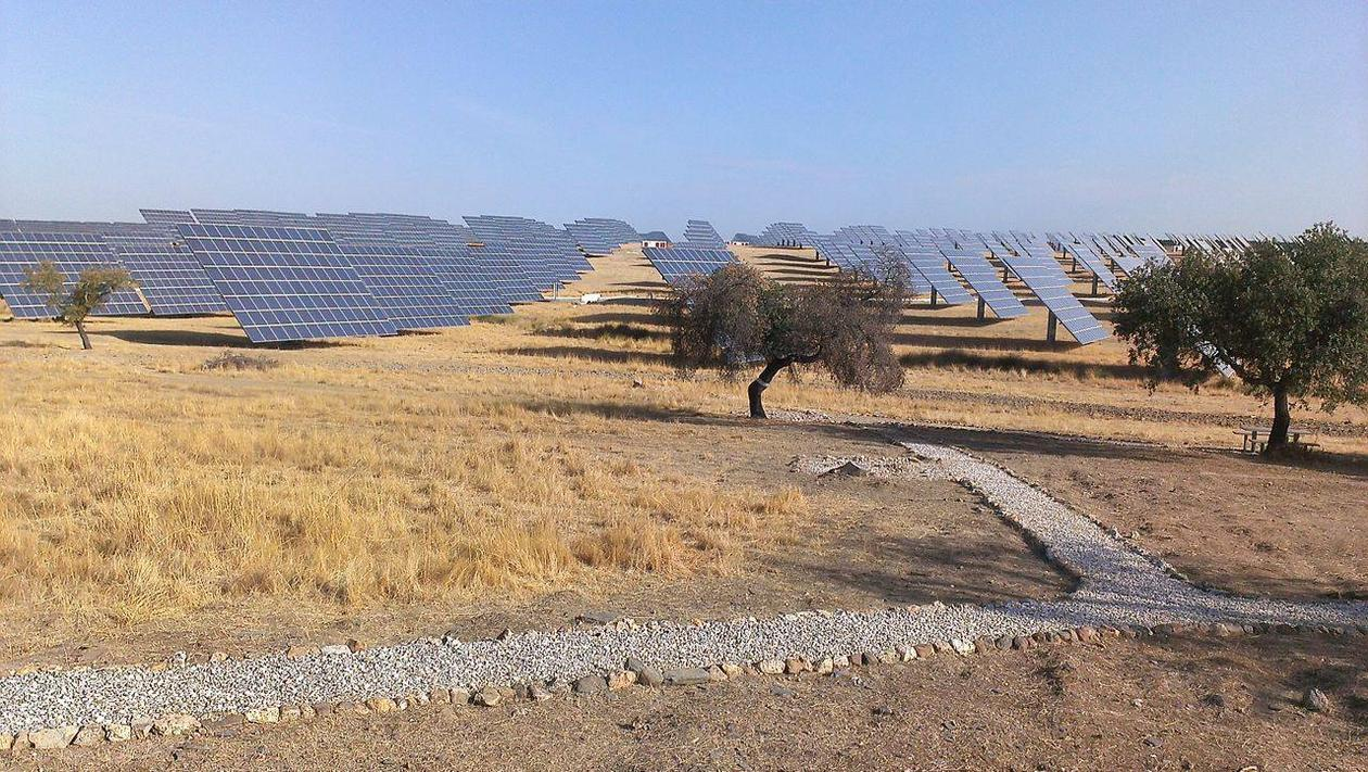 solar panels in dry landscape