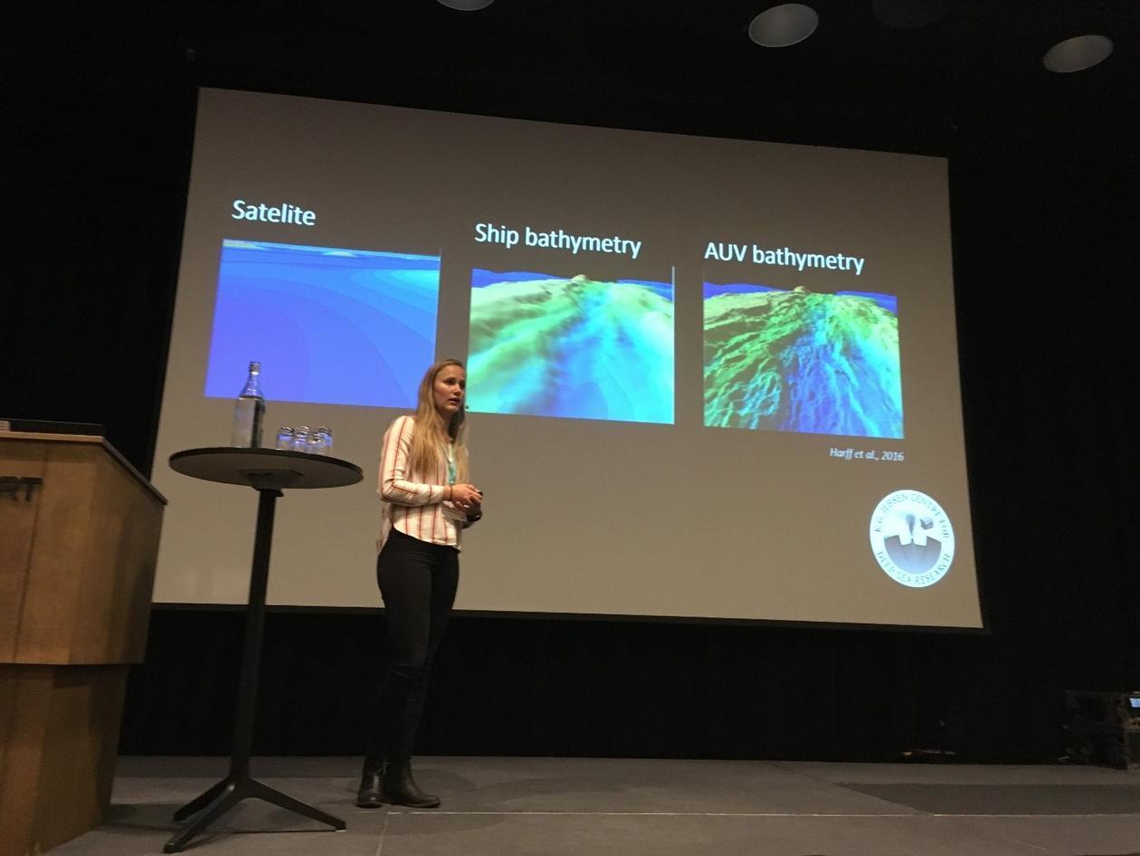 Foredrag av Solveig Lie Onstad