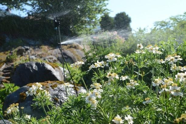 Efficient irrigation