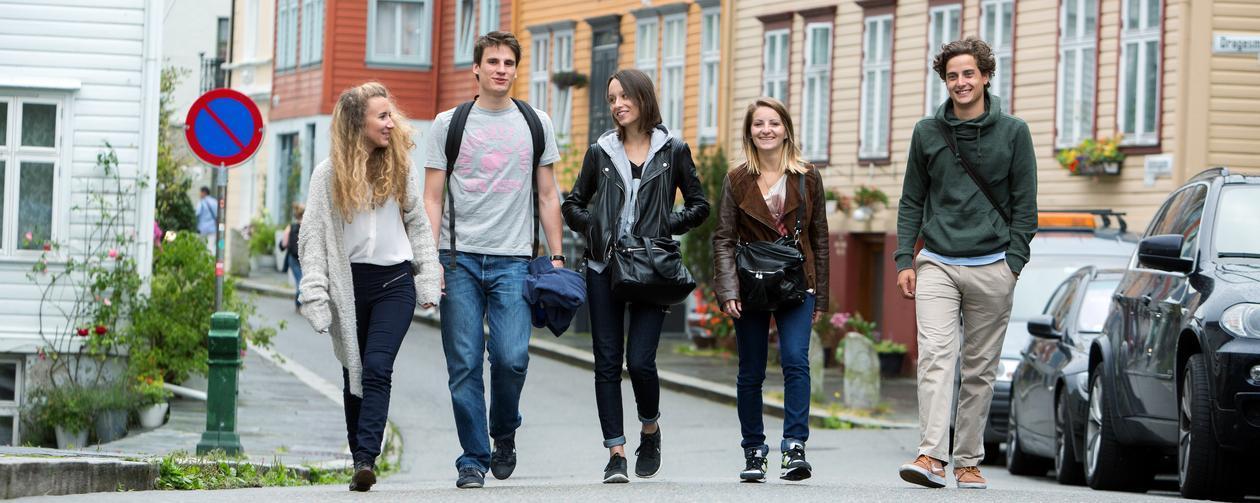 Nye studenter snakker og spaserer mellom trivelige trehus på Nygårdshøyden