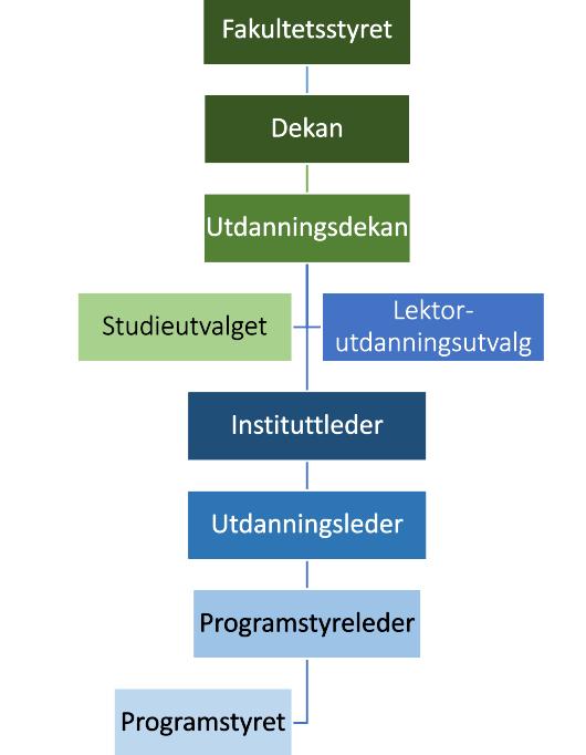 Styringsstruktur utdanningsfeltet MN